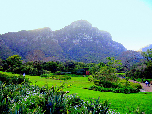Kirstenbosch National Botanical Garden Cape Town South Africa