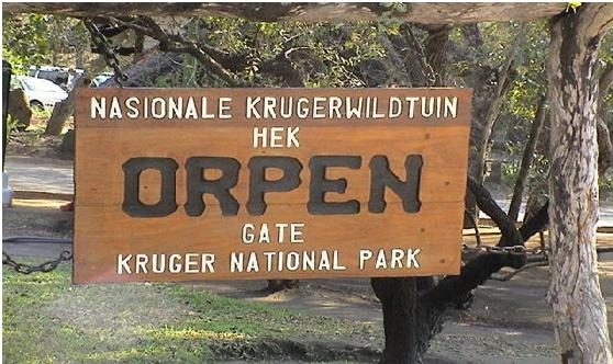 Kruger National Park Cape Town
